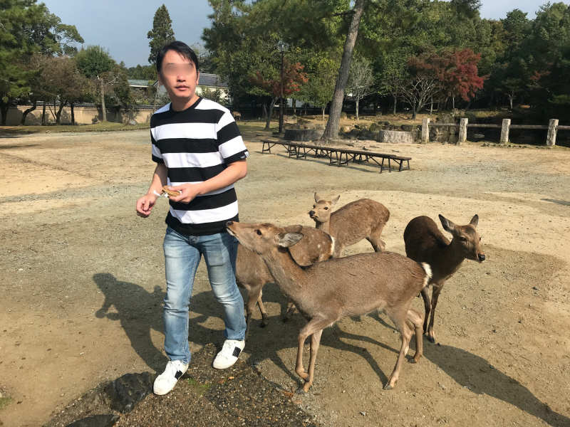1111-Private-Tour-from-Osaka-to-Nara-Park-Deer-by-Taxi2